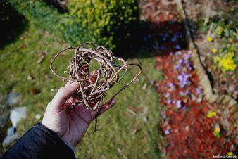 Nest Weinranken
