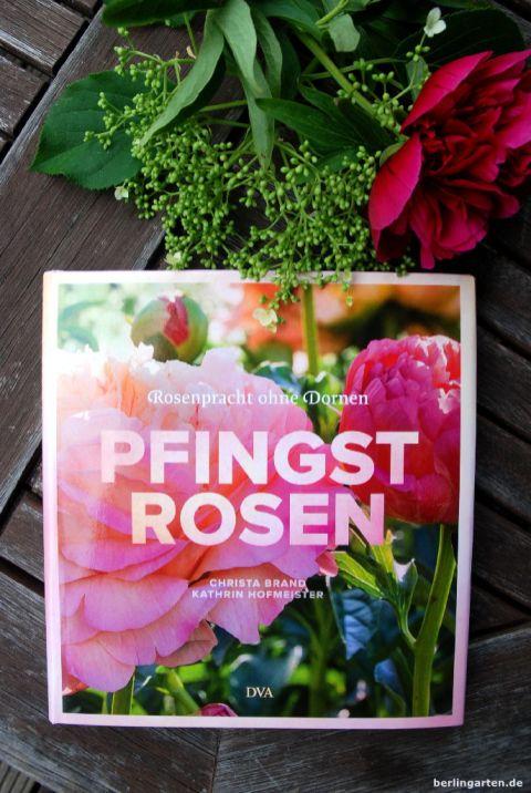 Pfingstrosen von Kathrin Hofmeister und Christa Brand