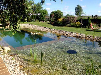 Schwimmteich Gartenbetti