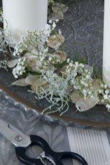 Schritt für Schritt zum Adventsarrangement: Langsam füllt sich der Teller mit Silberblatt, Schleierkraut und Stacheldrahtpflanze