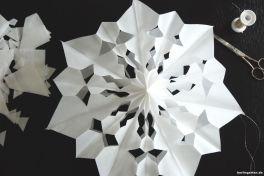 Stern Muster