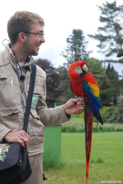 Vergnügliche Vogelshow in Walsrode