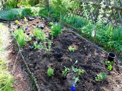 Verteilung Gemüse Kräuter