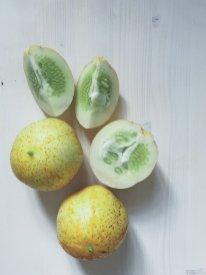 Jung und zart sind die Zitronenguken im Juli