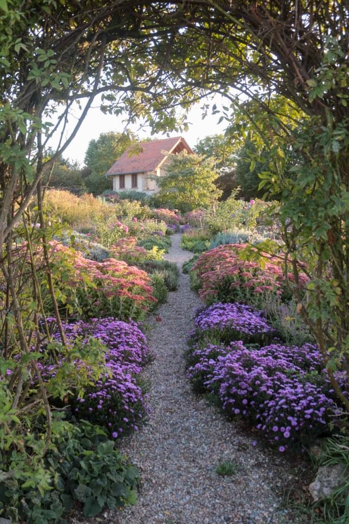 Herbstgarten mit Fetthenne und Astern