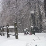 snow falling in old cemetery