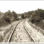 photo of railroad tracks in summer