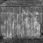 old garage with peeling paint and vines