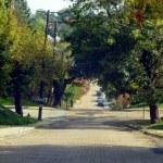 steep brick street