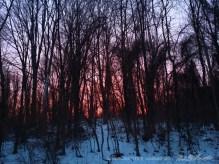 Sunset-11
