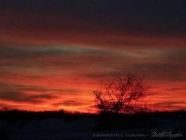 Sunset-15