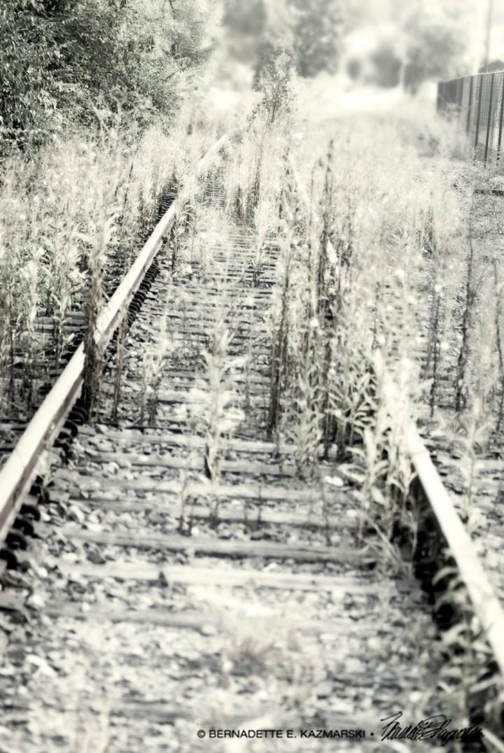 Abandoned, Leading Nowhere