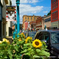 Carnegie's Main Street