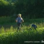 The Amish Boy