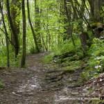 path uphill