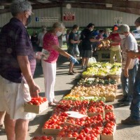 Fruits, Vegetables, Masks and Social Distancing at the Farmer's Market