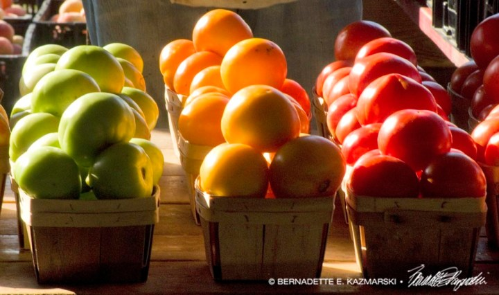 green, yellow and red tomatoes