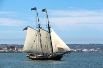 Spirit of Dana Point Tall Ship - Festival of Sail