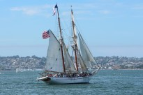 Exy Johnson Tall Ship - Festival of Sail
