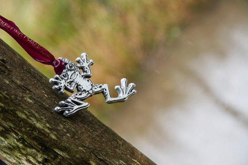 bog Frog medals for all bog snorkellers