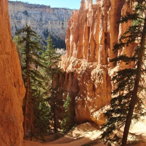 Peek-A-Boo Loop, Bryce Canyon NP, Utah, USA