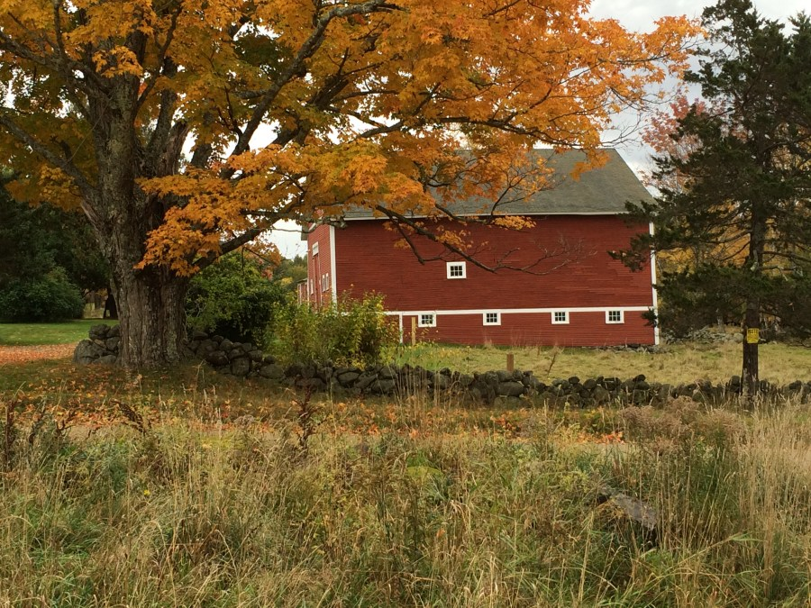 The big red barn in the front field has the capacity to hold hay for the winter and housing for livestock.