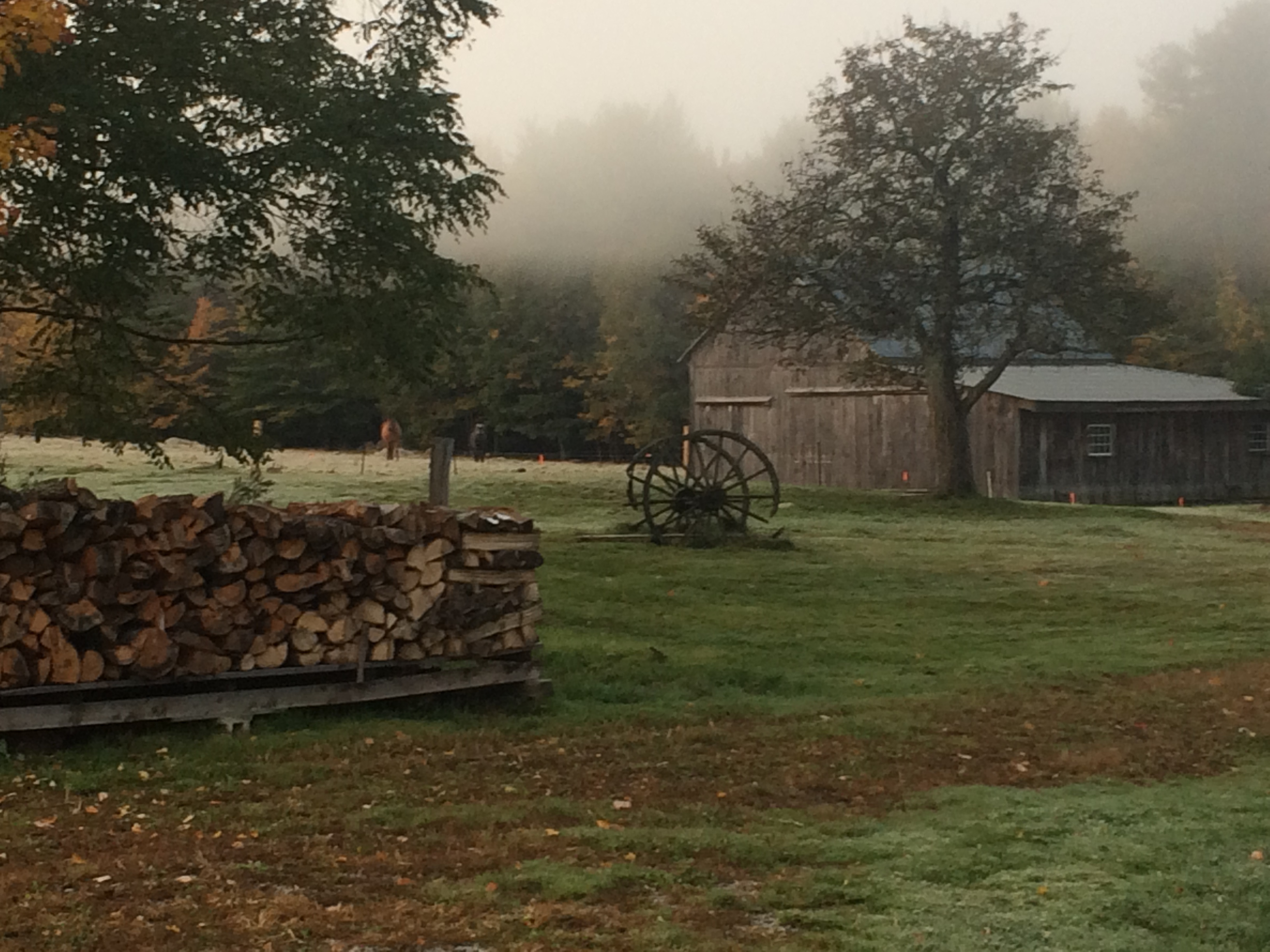 A subtle mist hovers over the cow barn as the morning sun warms the cold evening air.