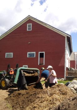 Moving the manure to the compost pile.
