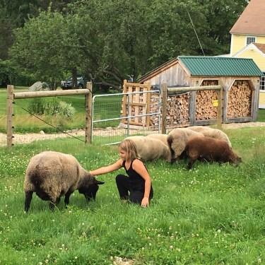 Lila petting Mom the sheep