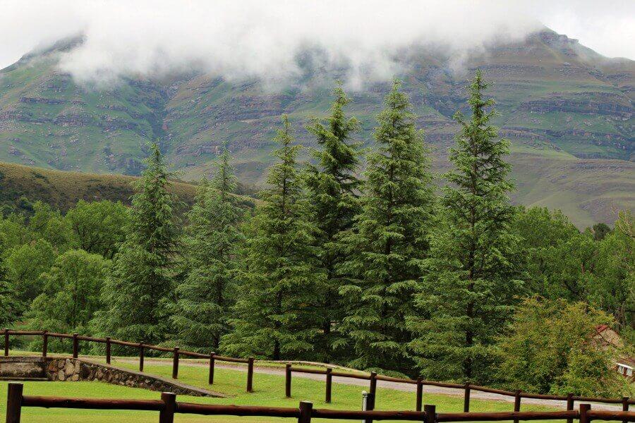 Lake Navarone | www.berrysweetlife.com