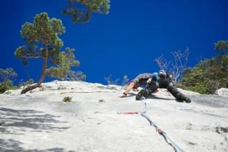 Le calcaire gris du Jura bernois