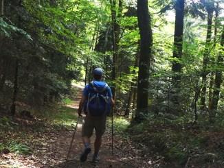 Le tour du grand ballon des Vosges