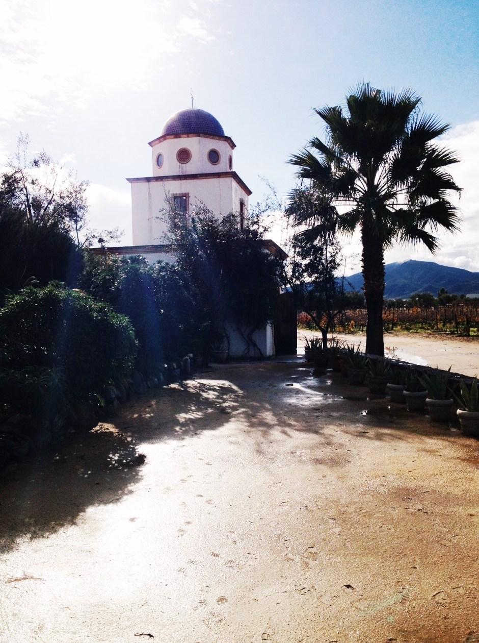 visit ensenada, mexican wine country mexico