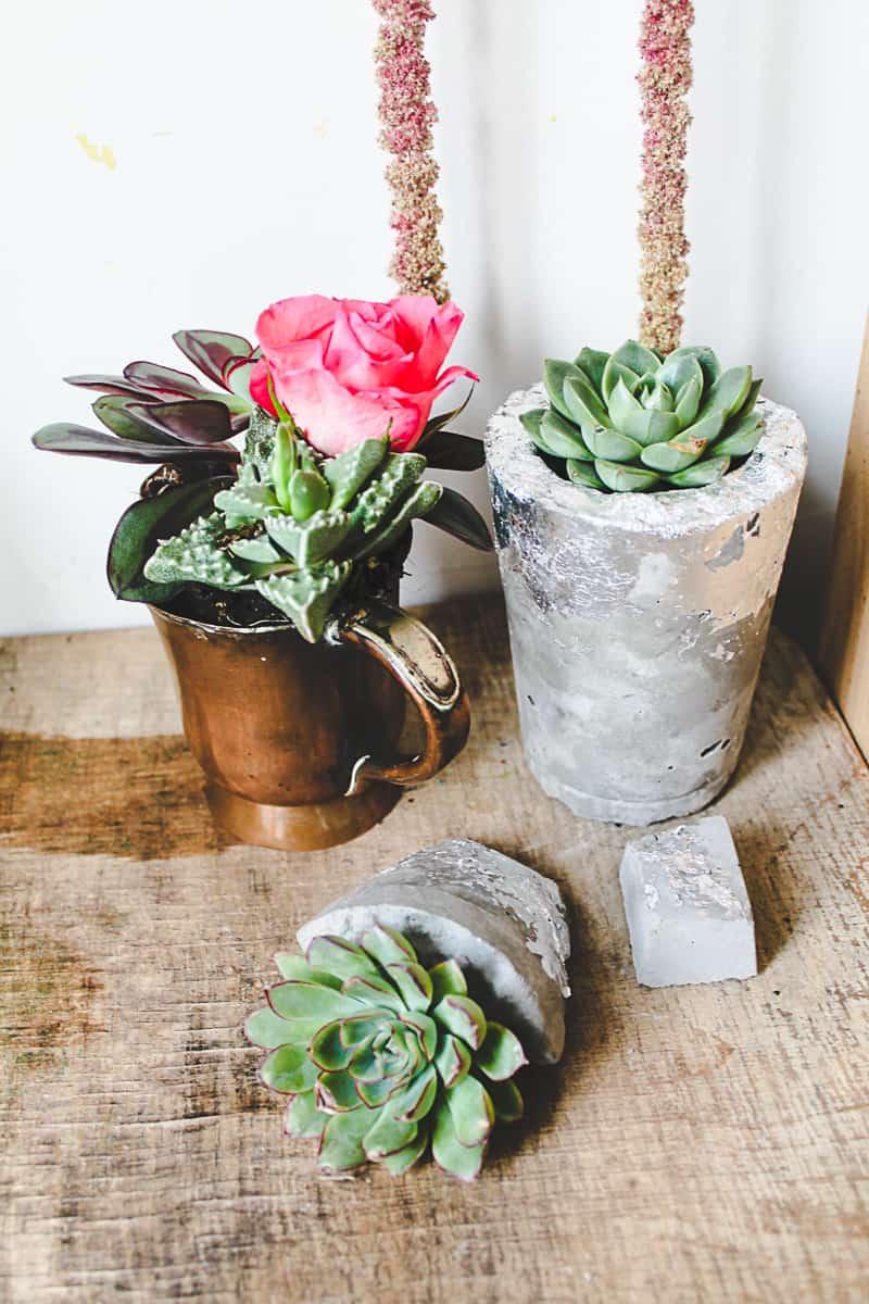 DIY Concrete Vase Silver Leaf Succulents-3