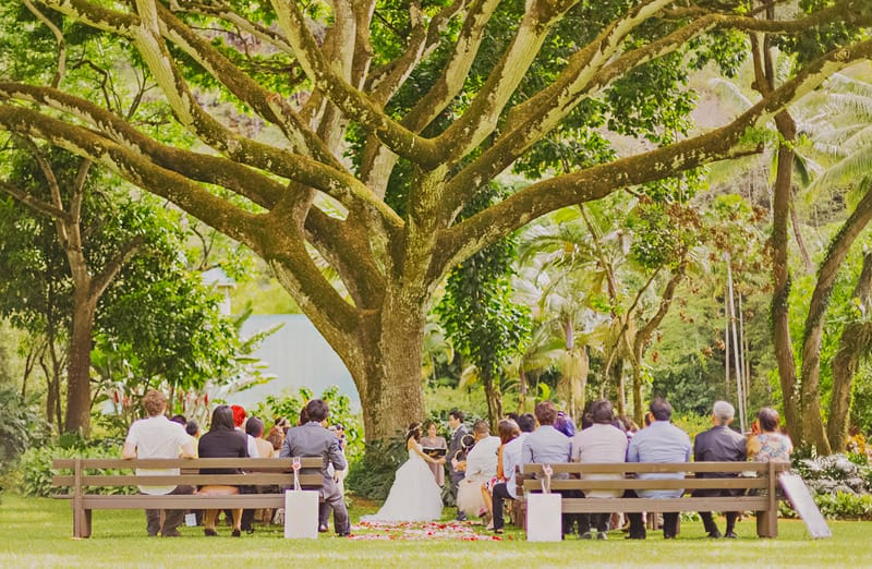 Destination wedding in hawaii whimsical and romantic tree ceremony