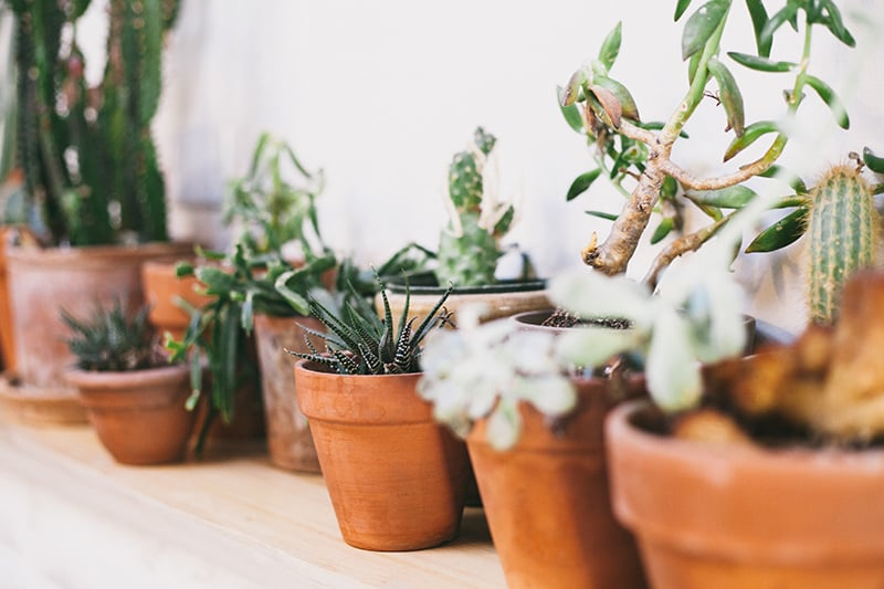 Bohemian Boho Wedding Inspiration Floppy Hat Bride Festival 28