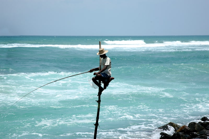 10 Unique honeymoon activities - fish on stilts in Sri Lanka