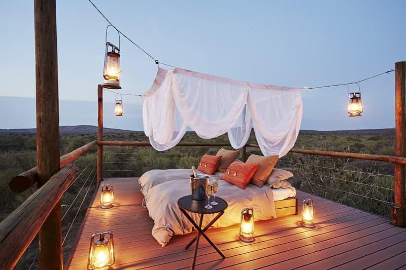 10 Unique honeymoon activities - safari