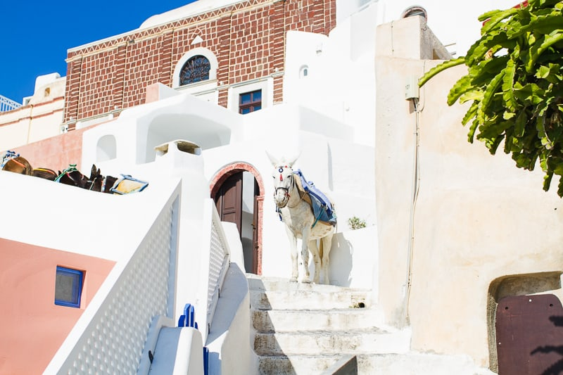 Santorini Oia Travel Guide Reccomendations Honeymoon Colourful Place Greece_-35