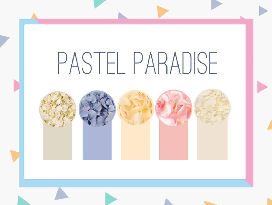 Pastel Paradise3