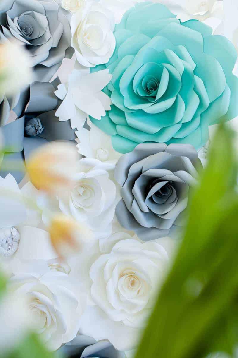 CLASSIC CARNIVAL WEDDING (1)