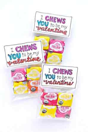 60+VALENTINES-DAY-GIFT-DIY'S-FOR-YOUR-GAL-PALS-I-CHEWS-YOU