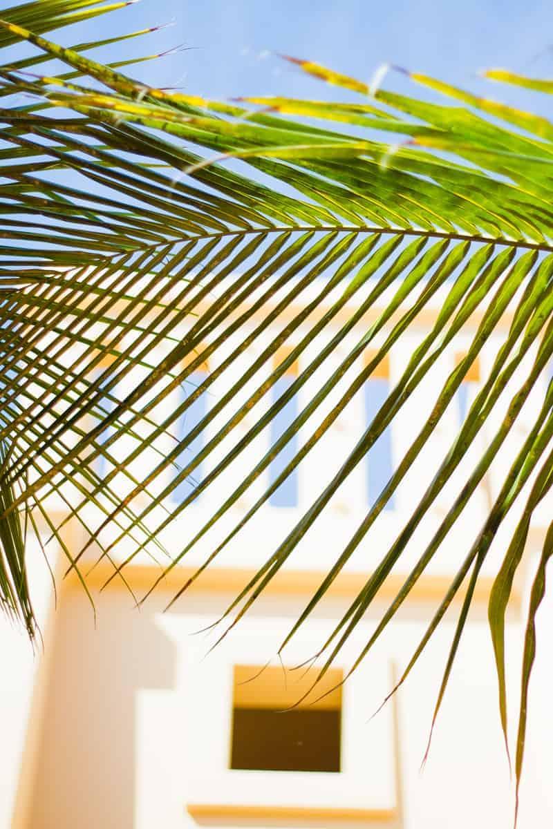 cape-verde-boa-vista-africa-travel-vacation-travel-guide-colourful-location-honeymoon-16
