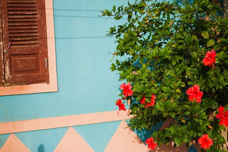 cape-verde-boa-vista-africa-travel-vacation-travel-guide-colourful-location-honeymoon-49