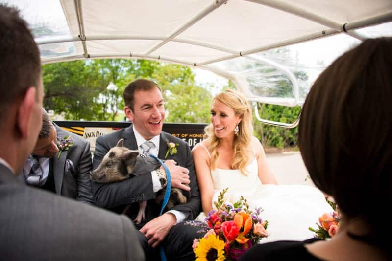 FUNKY COLORADO THEMED WEDDING WITH A PET PIG (6)