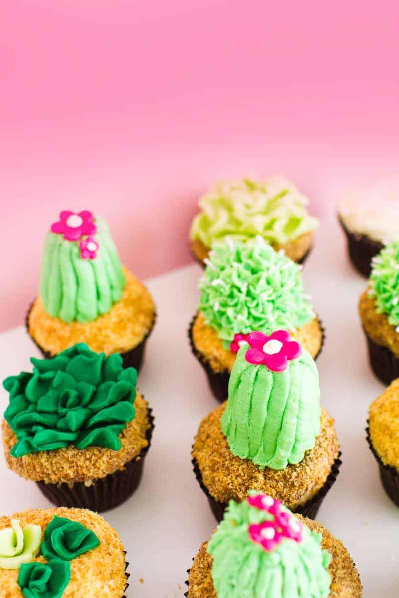DIY Succulent Cactus Cupcakes Tutorial Cacti Fun Unique Terrarium Two Little Cats Bakery Greenery Green Spring Themed-17