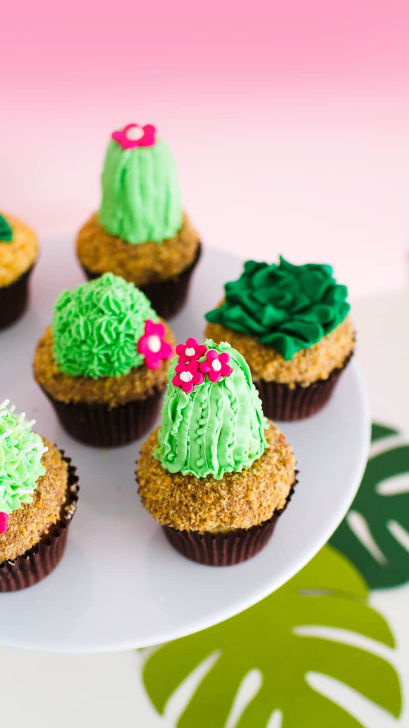 DIY Succulent Cactus Cupcakes Tutorial Cacti Fun Unique Terrarium Two Little Cats Bakery Greenery Green Spring Themed-4
