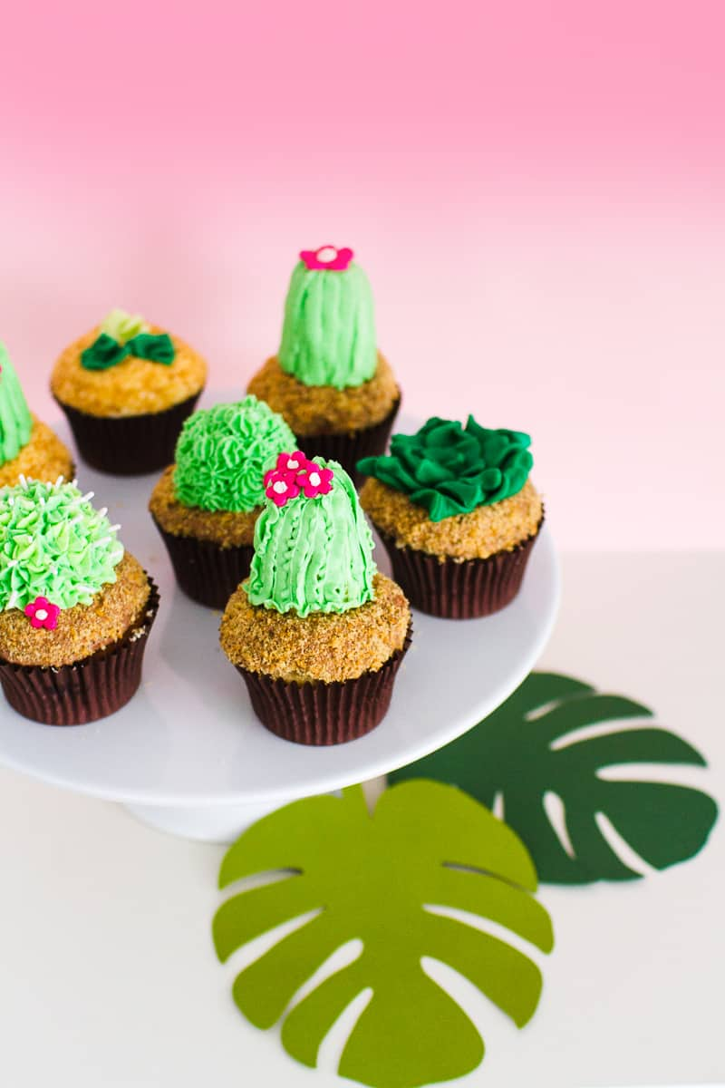 DIY Succulent Cactus Cupcakes Tutorial Cacti Fun Unique Terrarium Two Little Cats Bakery Greenery Green Spring Themed