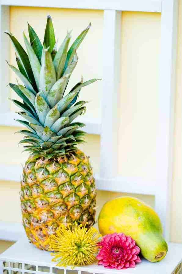 HAWAIIAN INSPIRED COLOURFUL WEDDING WITH PINEAPPLES COCKTAILS BRIGHT YELLOW COLOUR SCHEME-24