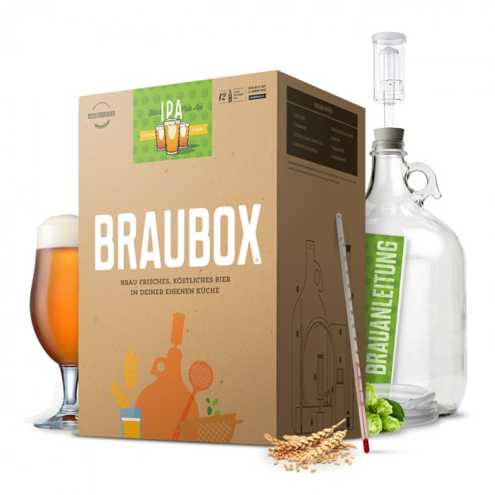 braubox-ipa-gross
